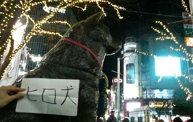 hirohirodog_top.JPG